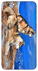 Timpax protective Armor Hard Bumper Back Case Cover. Multicolor printed on 3 Dimensional case with latest & finest graphic design art. Compatible with Apple iPhone 6 Design No : TDZ-26828