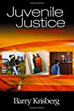 img - for Juvenile Justice: Redeeming Our Children book / textbook / text book
