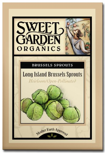 Long Island Brussel Sprouts - Heirloom Seeds