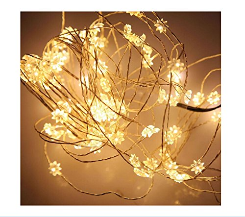 Deler 10M/33Ft 100 Led Eight-Pointed Warm White Copper Wire Battery Operated Fairy String Light Party Xmas Lighting Decorative Led Strip Indoor & Outdoor Lights Perfect For Backyards, Gazebos, Patios, Gardens