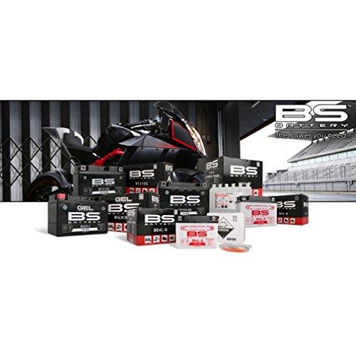 BS Battery 310572 BB14A-A1 Motorrad Batterie mit Säurepack , Schwarz