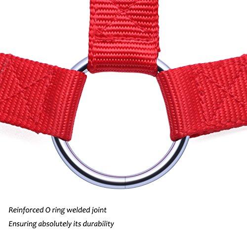 Guinzaglio Cane, PETBABA 30 - 50cm / 1 - 1.6FT Lunghezza Nylon Regolabile Accoppiatore Guinzaglio per 3 Cani Rosso L