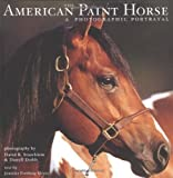 img - for The American Paint Horse : A Photographic Portrayal by Jennifer Forsberg Meyer (2001-10-01) book / textbook / text book