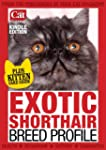 Exotic Shorthair Breed Profile (Your...