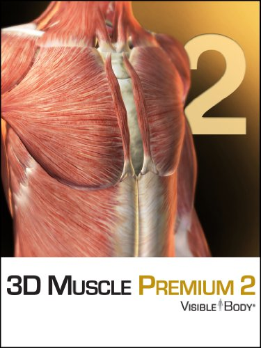 3D Muscle Premium 2 [Download]