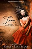 Torn (The Collide Trilogy Book 2)