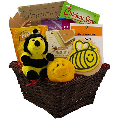 Art of Appreciation Gift Baskets Bee Better Soon Gift Basket with Plush Bee (Cheer Up Care Package compare prices)