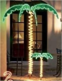 7' Tropical Lighted Holographic Rope Light Palm Tree