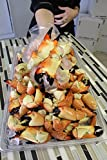 Florida Stone Crab claws 5 Lbs. Jumbo wild caught gulf fresh
