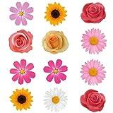 12 fleurs coffre de toit pour voiture - réguliers