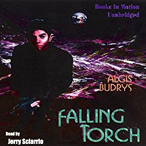 Falling Torch Audiobook