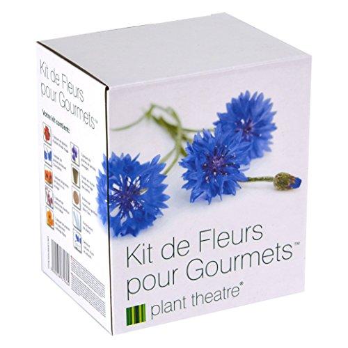 il-kit-fiori-gourmet-di-plant-theatre-6-varieta-di-fiori-commestibili-da-coltivare-regalo-ottimale