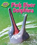 img - for Pink River Dolphins (Jungle Babies of the Amazon Rain Forest) book / textbook / text book