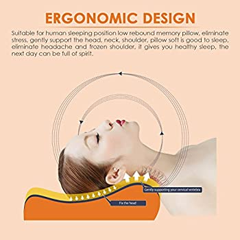 Contour Memory Foam Pillow,ESEOE Best Sleep Innovations Cervical Pillows for Neck Pain,Neck Support Pillow ,Micro-Vented Soft Bed Pillow andWashable Pillow Case(Standard )