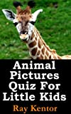 Animal Pictures Quiz For Little Kids