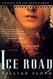 img - for Ice Road: A Novel book / textbook / text book
