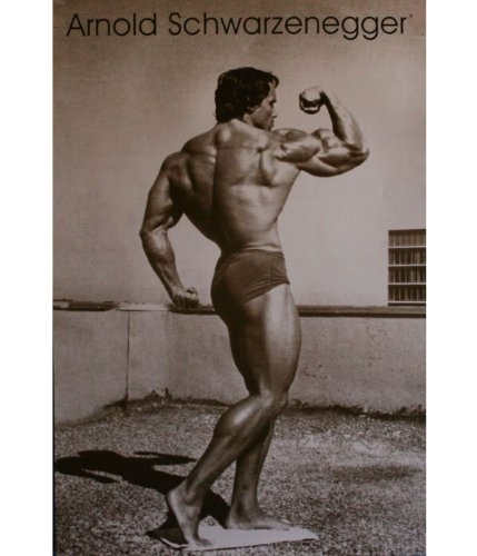 Arnold Schwarzenegger Body Building Poster 3516