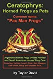 Ceratophrys: Horned Frogs as Pets: Common Name: Pac Man Frogs