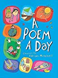 img - for A Poem a Day (New Voices in Irish Criticism Series) book / textbook / text book