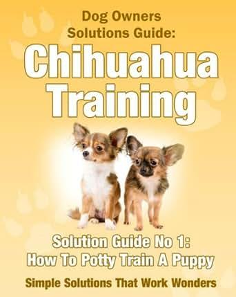 Dog Training How To Potty Train A Chihuahua Puppy A Dog