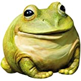Evergreen Enterprises 842039 Medium Portly Frog