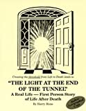 img - for Light at the End of the Tunnel: A Real Life - First Person Story of Life After Death book / textbook / text book
