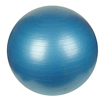 Sunny Health & Fitness Anti-Burst Gym Ball