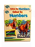 Horse Design Colour by Numbers Kit with Felt Tip Colouring Marker Pens