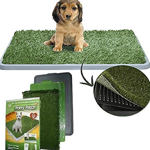 dobor-lettiera-maxi-wc-per-cani-e-gatti-cuccioli-di-media-taglia-con-erba-sintetica-assorbente-ottim