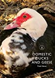 img - for Domestic Ducks and Geese (Shire Library) by Fred Hams (2008-03-04) book / textbook / text book