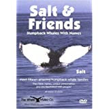 Salt & Friends: Humpback Whales With Names ~ Salt is the most...