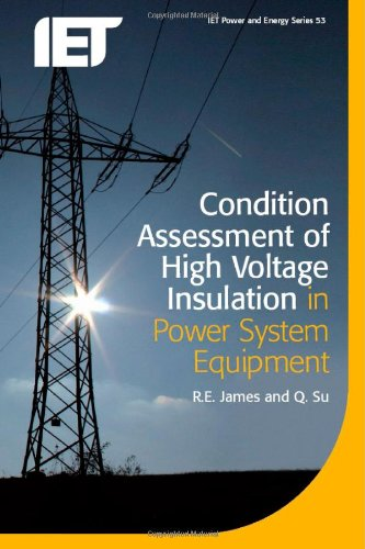 Condition Assessment of High Voltage Insulation in Power System Equipment (IET Power and Energy)