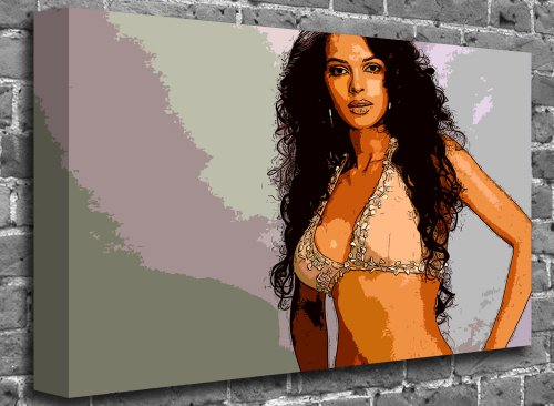 "Mallika Sherawat Bollywood Canvas Art Canvas Print Picture print Size: (24"" x 16"")"