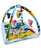 #10: Feathers Mosquito Net Cum Play Gym