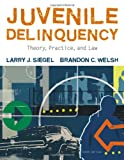 img - for Juvenile Delinquency: Theory, Practice, and Law book / textbook / text book