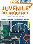Juvenile Delinquency: Theory, Practic...
