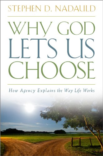 Image for Why God Lets Us Choose: How Agency Explains the Way Life Works