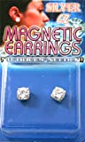 Fake Piercing Earrings with Clear CZ (Magnetic)