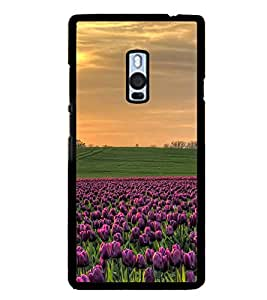 ifasho Designer Phone Back Case Cover OnePlus 2 :: OnePlus Two :: One Plus 2 ( Colorful Pattern Design Triangle )