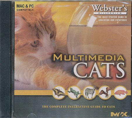 Multimedia Cats