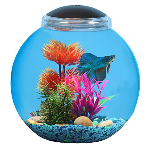 Api betta kit fish tank 3 gallon ebay for Betta fish tanks amazon