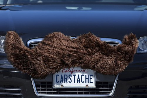 Carstache Grizzly Brown Car Mustache