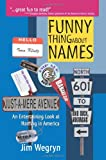 img - for Funny Thing About Names: An Entertaining Look at Naming in America book / textbook / text book