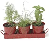 Houston International 7400-4E XR Set Of Three Small Steel Planters With Tray, Red