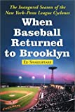 img - for When Baseball Returned to Brooklyn: The Inaugural Season of the New York-Penn League Cyclones book / textbook / text book