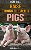 How To Raise Strong & Healthy Pigs: Simple Guide For Raising Super Pigs (How To eBooks Book 42)