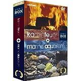 """Kaminfeuer + Marine Aquarium (2 DVDs) [Special Collector's Edition]von """"Timm Hendrik Hogerzeil"""""""