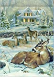 Christmas Winter Deer Woodlands House Flag 28 x 40