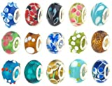 50pc Lot Lampwork Murano Glass European Mix Beads - Compatible with Most European Style Charm Bracelets