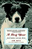 A Dog Year: Twelve Months, Four Dogs, and Me (0812966902) by Katz, Jon